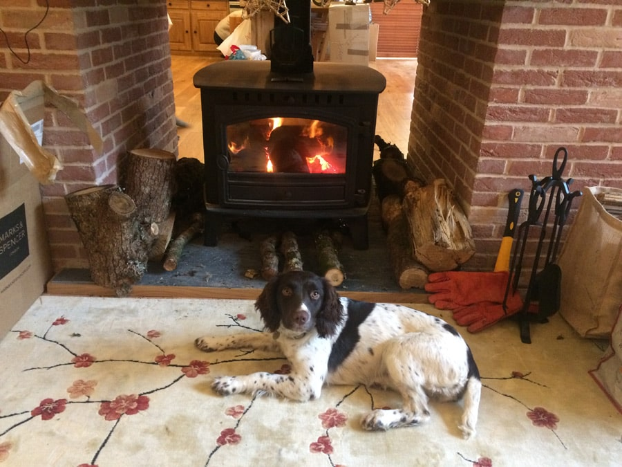 Log fire warming up the banquet hall. Note, pets only possible with specific permission. Small dogs only, and only in summer (winter mud).
